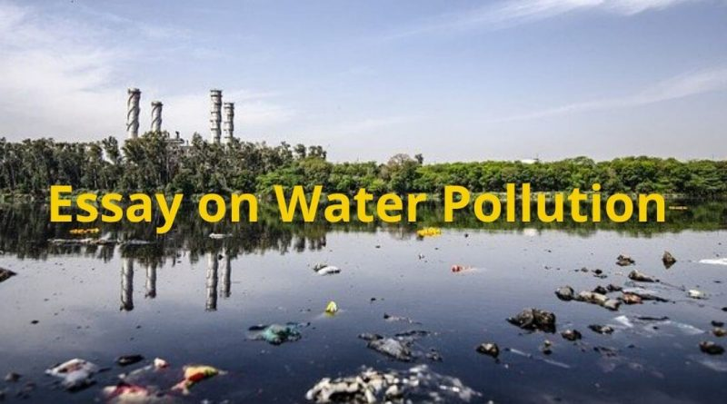 Essays on water pollution